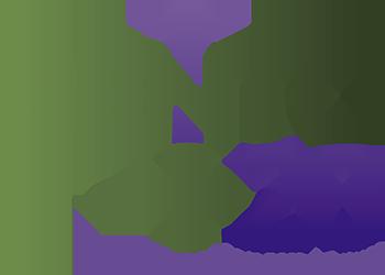 Bento+20